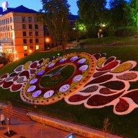 Цветочные часы :: Валентина Данилова