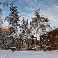 Теплый зимний день :: Андрей Чуманов
