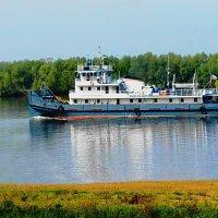 Река Кама :: Юлия Шабалдина
