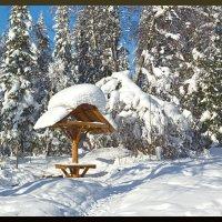 Снежные шапки :: Kogint Анатолий