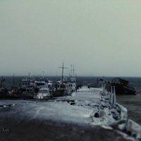 ледяной ноябрь :: василиса косовская