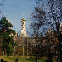 У стен Ново-Иерусалимского монастыря. :: Владимир Воробьев