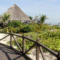 Куба. Остров Санта Мария. Отель Мелиа Лас Дунас. :: Виктория
