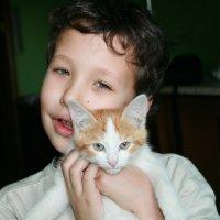 два котёнка :: Лидия кутузова