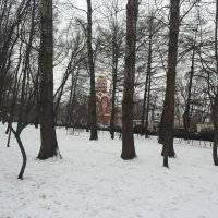 в Петровском парке :: Владимир Прокофьев