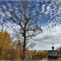 Осень. :: Владимир Белозеров
