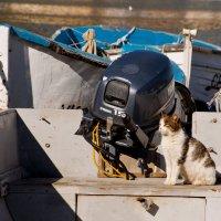 Что-то капитан опаздывает на рыбалку... :: Алексей Романенко