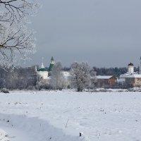 Николо-Пешношский монастырь :: Юлия Левикова