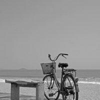 велосипед :: Алексей Карташев