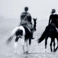 Люди, море, лошади... 2 :: Лилия Гиндулина