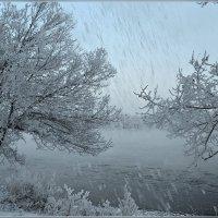 И тихо осыпался снег :: galina tihonova
