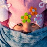 мороз - прячь нос :: Тася Тыжфотографиня