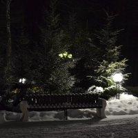 зимний вечер :: Оля Ковалева