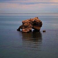 Одиночество- только вода и чайки.... :: Алексей К