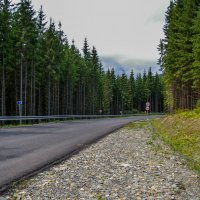 road :: Игорь Ф.