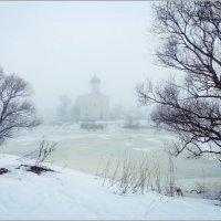 Покрова на Нерли :: Валерий Шейкин