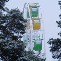 В зимнем парке тополя... :: Владимир Гилясев