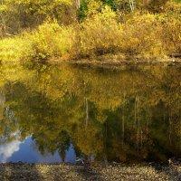Отражение осени :: Нина северянка