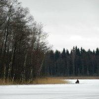 рыбак :: Юрий Бондер