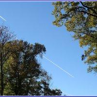 Пейзаж с двумя самолётами :: Владимир Гилясев
