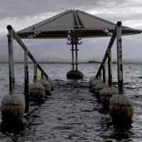 Самое мертвейшее из всех Мёртвых морей. :: Михаил Палей