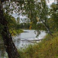 Осень :: Евгений Мельников