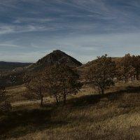 гора шелудивая :: Ник Карелин