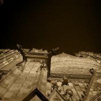 Прага, собор Святого Вита, ночью. 4 :: Владимир Барсуков