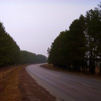 Дорога на Мглин :: Владимир
