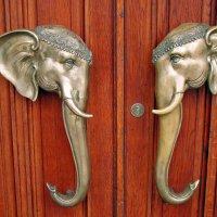 Дергай, за хобот слона и заходи к нам -:))) :: Александр Запылёнов