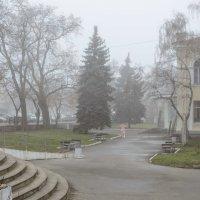 Туман :: Константин Бобинский
