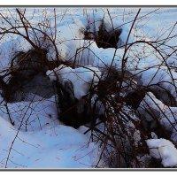 зима :: алекс дичанский