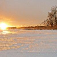 Зимний рассвет :: Анастасия Белякова