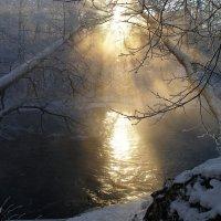 Мороз :: Людмила Алексеева