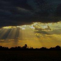 Небо Украины (4) :: Игорь Липинский