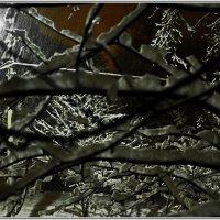 Ночной снегопад. :: Владимир Михайлович Дадочкин