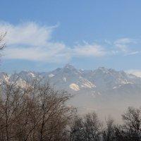Величественные горы города Алматы :: Nurgul