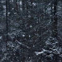 как тихо падал снег :: sergej-smv