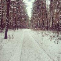 Зима на Урале :: Владимир Бардин
