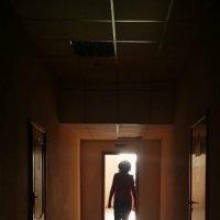 Офисный коридор в солнечный день. :: Татьяна Копосова