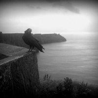 Край света - скалы Мохер, Ирландия :: Марина Домосилецкая