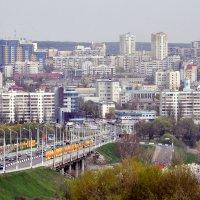 Белгород :: Елена Грибакина