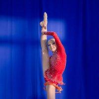 Художественная гимнастика (из серии) :: Виталий Волкоморов