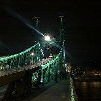 цепной мост :: Илья Капля