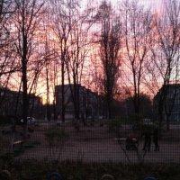 Закат лета :: Alina ...