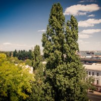 Вид с тёщенного моста :: Виталий Любицкий