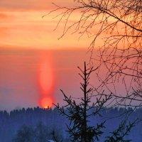 Зимний закат :: Валерий Талашов