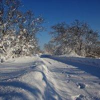 Зимняя дорога. :: Kassen Kussulbaev
