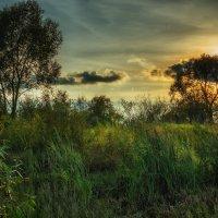 Remembering summer. :: Andrei Dolzhenko