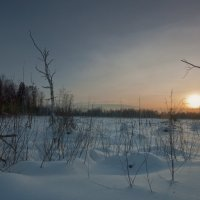 И лишь былого тень здесь на просторах выжила... :: Владимир Комышев